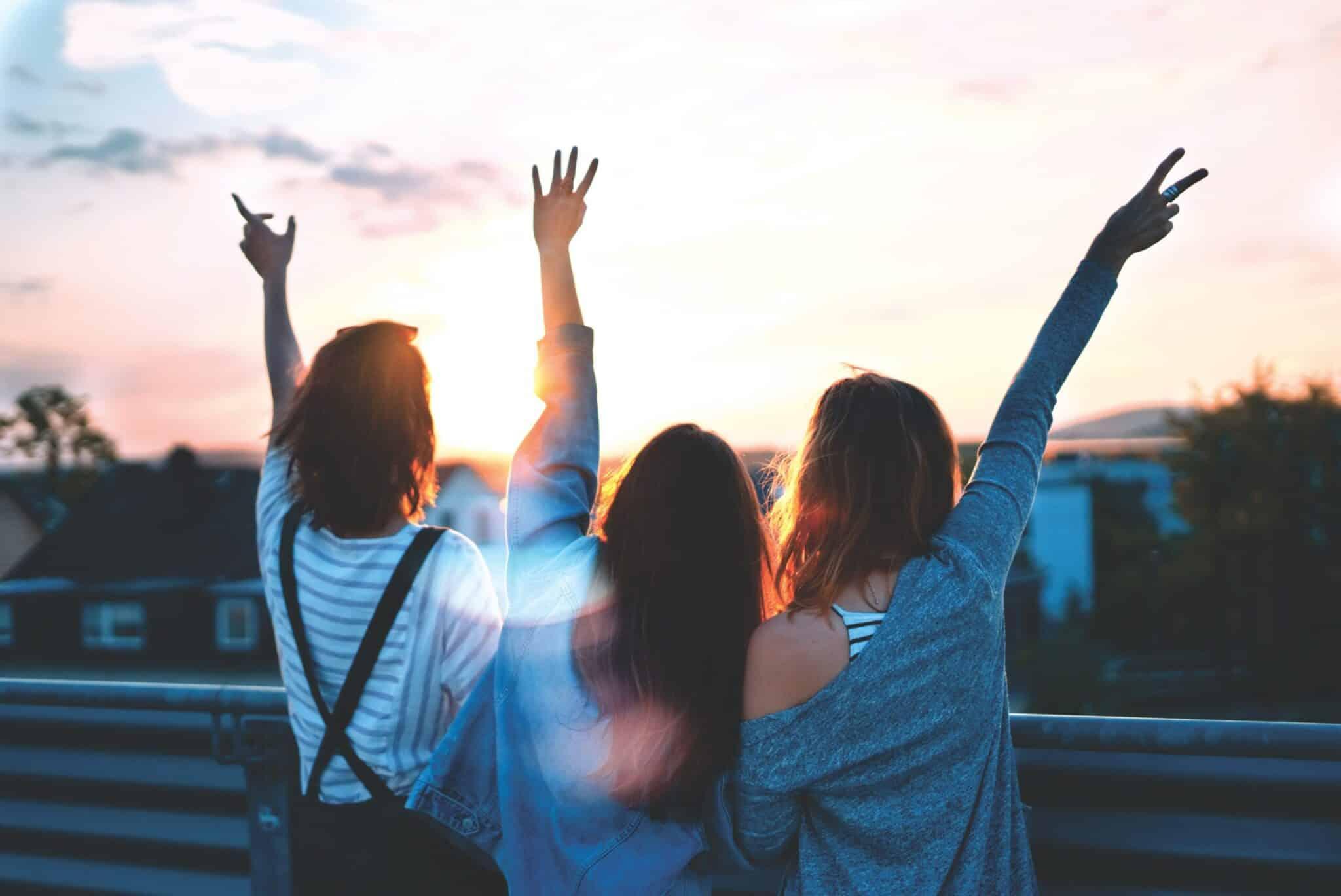 Venner - venskab